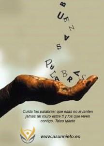 PALABRAS 6